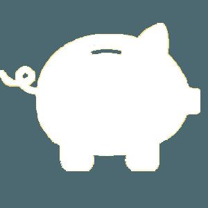 DebtWave Logo in White